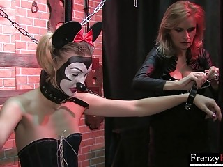 FrenzyBDSM Clamps used on Bondaged Jester Tits